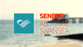 #SeneddSwansea - Taking the National Assembly to the people of Swansea