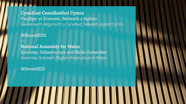 Economy, Infrastructure and Skills Committee